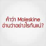 คำว่า Moleskine อ่านว่าอย่างไรกันแน่?