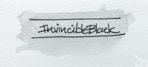 Private Reserve Invincible Ink-14