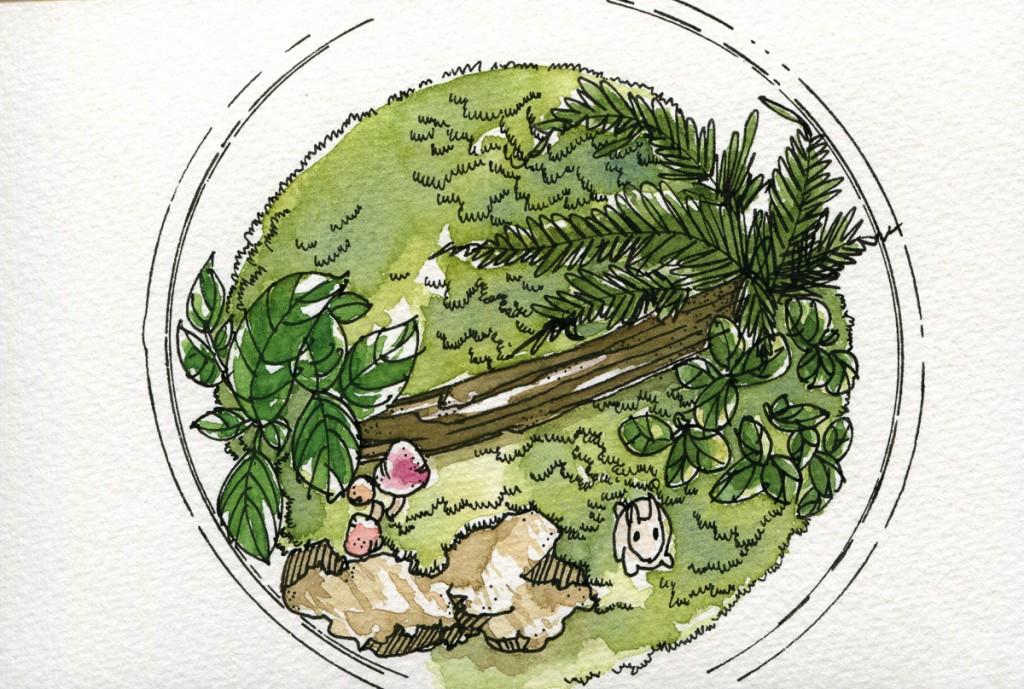 ShinHan Art PWC Watercolor-11