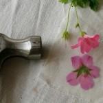 ชวนทุบ! Hapa-Zome ศิลปะการย้อมสีด้วยการทุบดอกไม้สด