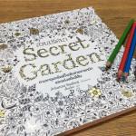 สมุดระบายสีเพื่อสร้างสมาธิและความสร้างสรรค์ Colouring Book
