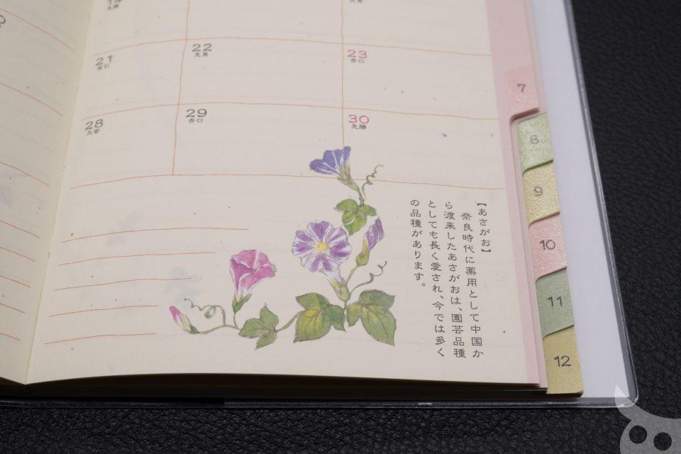 MIDORI Diary 2017-40