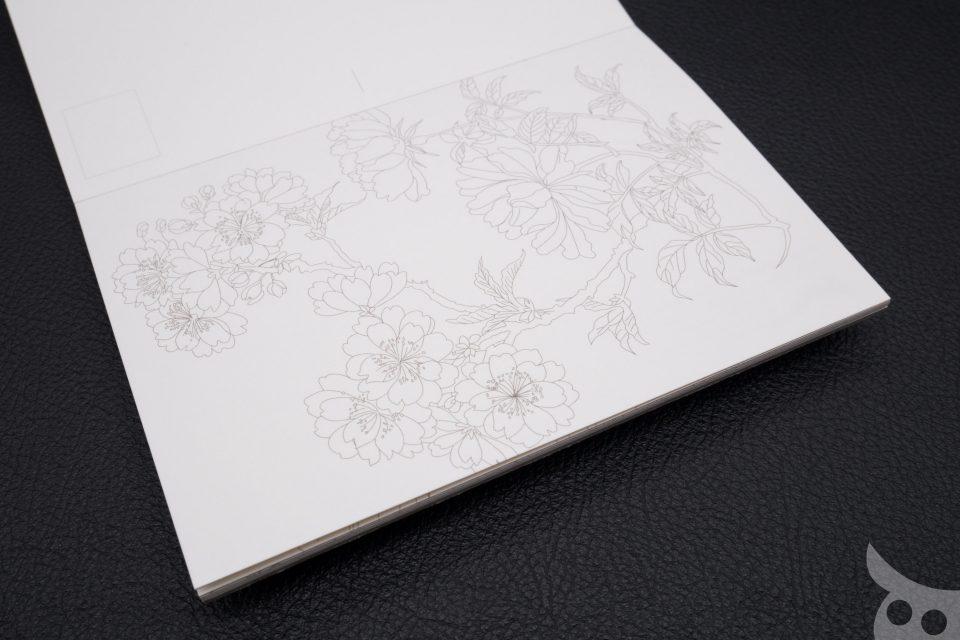 pepin-colouring-book-08