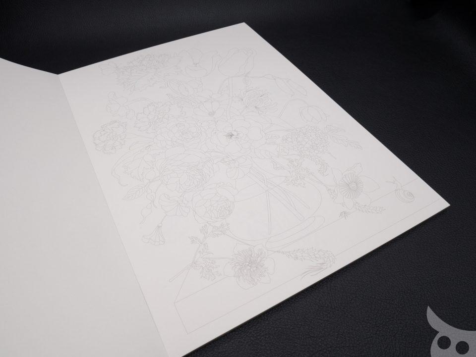 pepin-colouring-book-27
