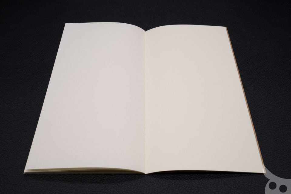 tn-diary-2017-39